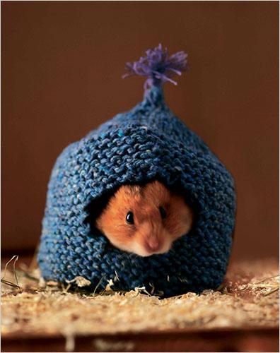 Hamsterhome