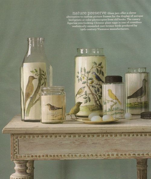 two kitties: Decorating with Birds: Ideas from Martha Stewart Living.