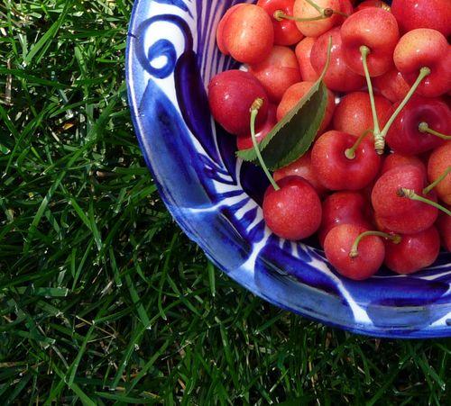 Cherrythis 002