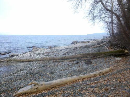 2011-01-24_09-50-55_536