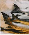 Fishonice_2